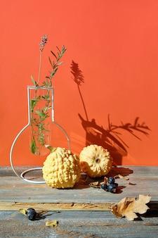 Nowoczesna jesienna aranżacja z żółtymi dyniami, jesienne liście dębu na drewnianym stole z pomarańczową ścianą
