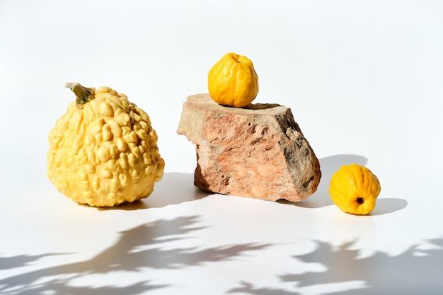Nowoczesna jesienna kompozycja z twardymi cieniami