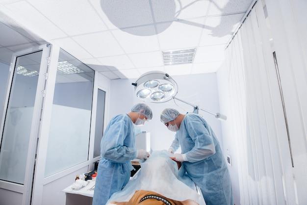 Nowoczesna klinika weterynaryjna, zabieg wykonywany w celu ratowania życia dużego psa