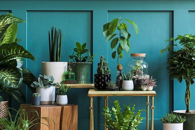 Nowoczesna kompozycja przydomowego ogrodu wypełniła wiele pięknych roślin, kaktusów, sukulentów, roślin powietrznych w różnych wzorniczych donicach. stylowe wnętrze botaniczne. zielone panele ścienne. szablon koncepcji ogrodnictwa domowego