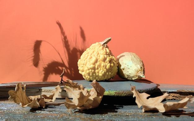 Nowoczesne ceglane podium jesienne z naturalnym dekorem z cieniami w kolorze pomarańczowym i szarym