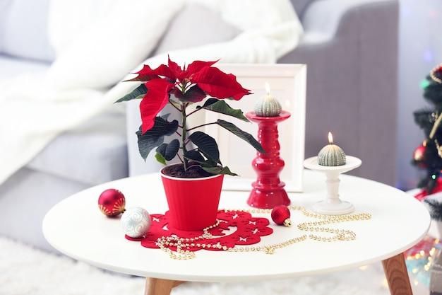 Nowoczesne wnętrze pokoju z bożonarodzeniową poinsecją
