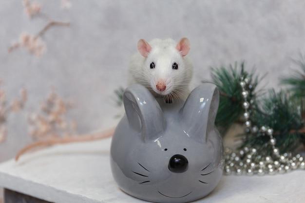 Noworoczny szczur i sztuczna szara mysz