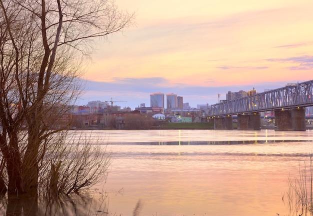 Nowosybirsk syberia rosja05032021 rano nad rzeką ob nagie drzewa w wodzie