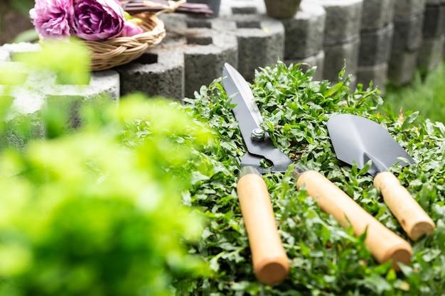 Nożyczki do trawy i mała łopata na dywan z trawy, koncepcja przyrody i ogrodnictwa.