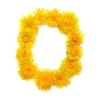 Numer 0 jasnożółtych kwiatów mniszka lekarskiego, izoluj na białym tle