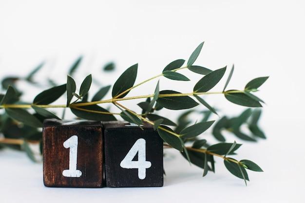 Numer 14