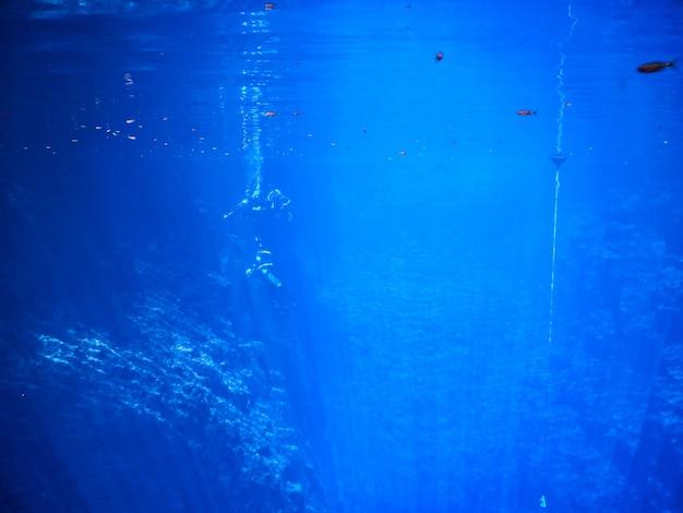 Nurkowie w błękitnej lagunie