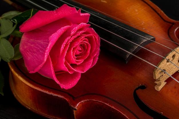 Nuty na skrzypce i róża