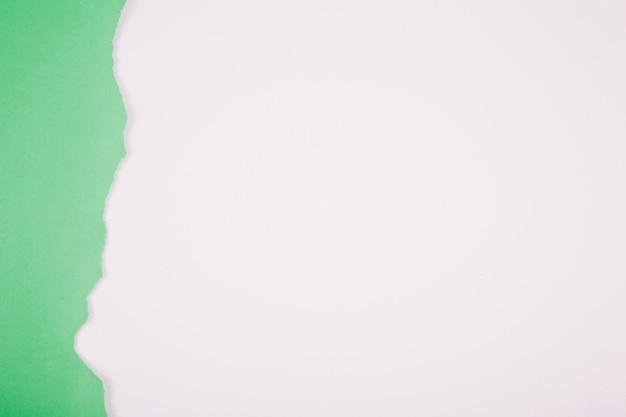Obdarty zielony arkusz na białym tle