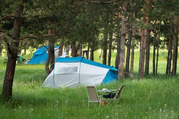 Obóz namiotowy w lesie