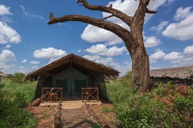 Obóz namiotowy znajduje się w parku narodowym serengeti