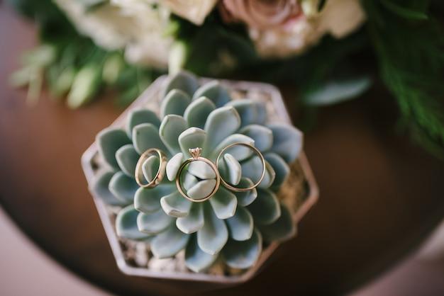 Obrączki ślubne leżą na kwiat z bliska