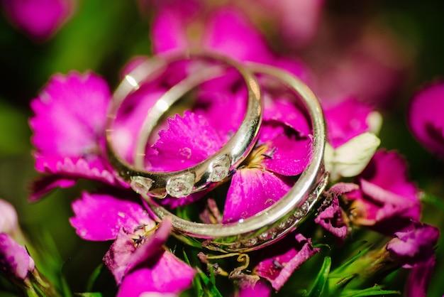 Obrączki ślubne leżą na różowy kwiat z bliska