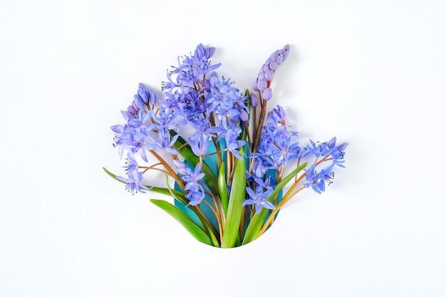 Obramowanie ramki wykonane z kwiatów przebiśnieg na białym tle
