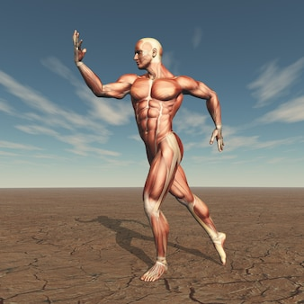 Obraz 3d męskiego budowniczego ciała z mapą mięśni w jałowym krajobrazie