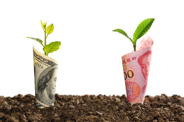 Obraz banknotu chińskiego juana i banknotu dolara amerykańskiego z roślinami rosnącymi na wierzchu dla biznesu, oszczędzania, wzrostu, gospodarki na białym