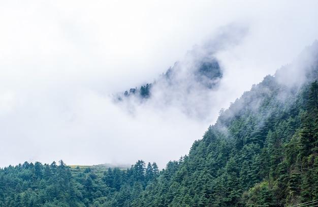 Obraz gór himalajów pokrytych mgłą