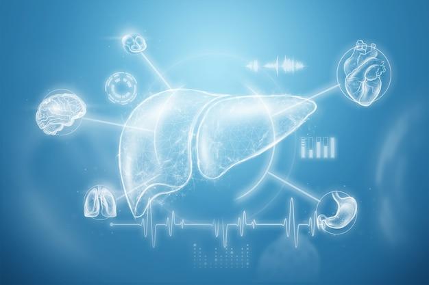 Obraz hologramu wątroby na tle danych medycznych i wskaźników. koncepcja biznesowa leczenia ludzkiego zapalenia wątroby typu, profilaktyka chorób, diagnostyka online. renderowania 3d, ilustracja 3d.