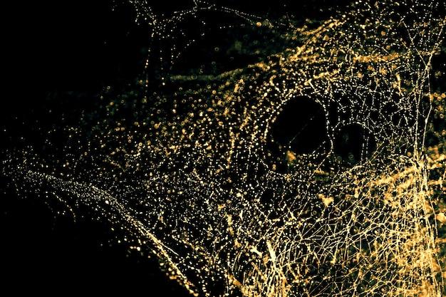 Obraz niewyraźnej abstrakcji i sztuki z bokeh jasnego złotego odcienia pajęczyny