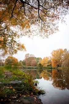 Obraz przedstawiający deszczowy dzień jesienią