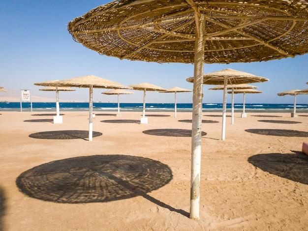 Obraz słomianych parasoli na plaży oceanu w gorący słoneczny dzień na tle błękitnego nieba