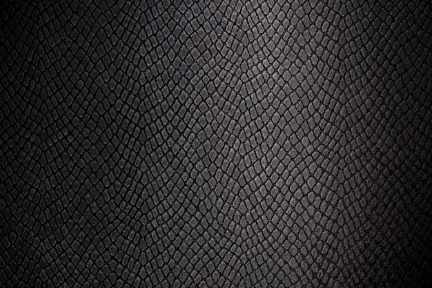 Obraz tła skóry gadów tekstury, zbliżenie zdjęcie