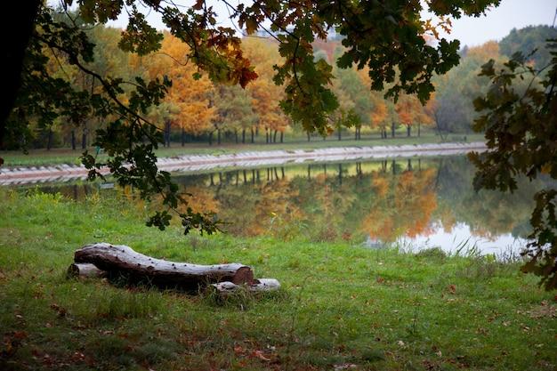 Obraz w parku w deszczowy jesienny dzień