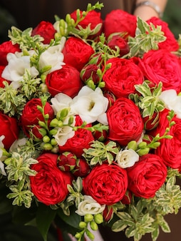 Obraz w tle bukiet kwiatów w kolorze czerwonym i białym. piękne róże w kształcie piwonii i pachnąca wiosenna frezja z pitosmotrum. kompozycja kwiatowa w kwiaciarni na prezent