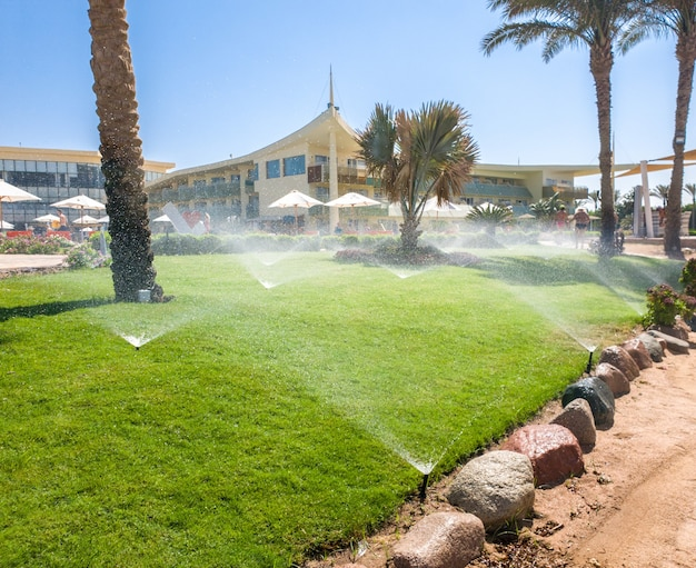 Obraz wielu ogrodowych zraszaczy wodnych woda piękna zielona trawa trawnik i palmy w letnim kurorcie hotelowym na plaży