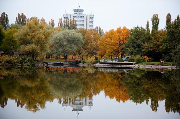 Obraz z drzewami jesienią