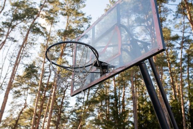 Obręcz do koszykówki w lesie. w dowolnym celu.