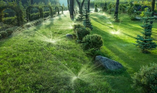 Obrotowa dysza automatycznego systemu nawadniania nawadnia soczystą, młodą, zieloną trawę trawnikową. selektywne skupienie.