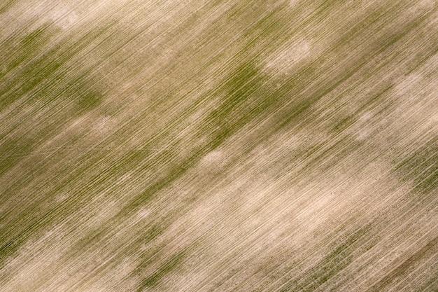 Obsiane pole uprawne, widok z góry