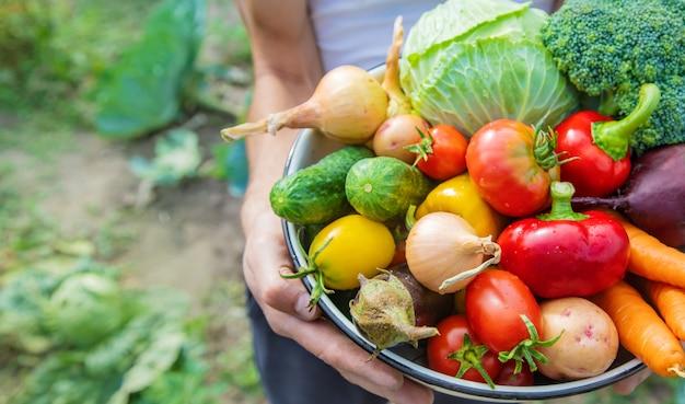Obsługuje rolnika z domowej roboty warzywami w jego rękach.