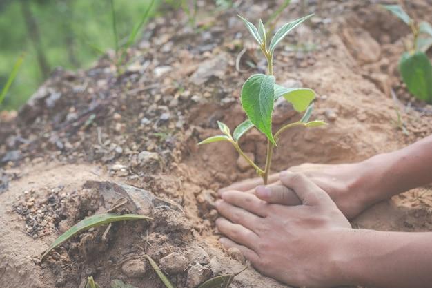 Ochrona środowiska w ogrodzie dla dzieci.