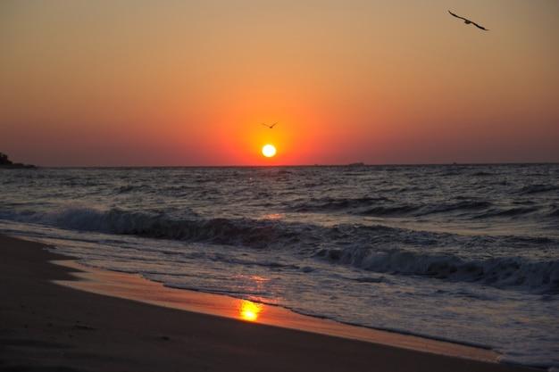 Od strony morza o wschodzie słońca. kolorowe niebo o zachodzie słońca na horyzoncie. wschodzące słońce odbijające się na mokrym piasku z spokojnymi falami oceanu w tle