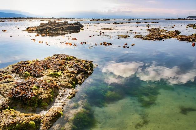 Odbicia chmur w spokojnej wodzie morskiej i skały z glonami na powierzchni.
