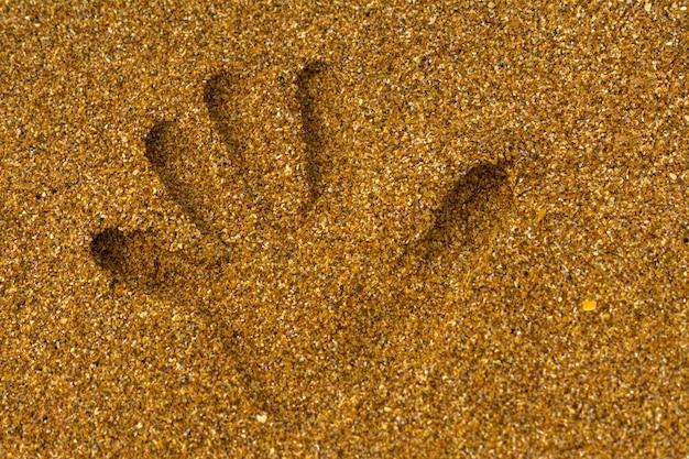 Odcisk dłoni na piasku nad brzegiem morza.