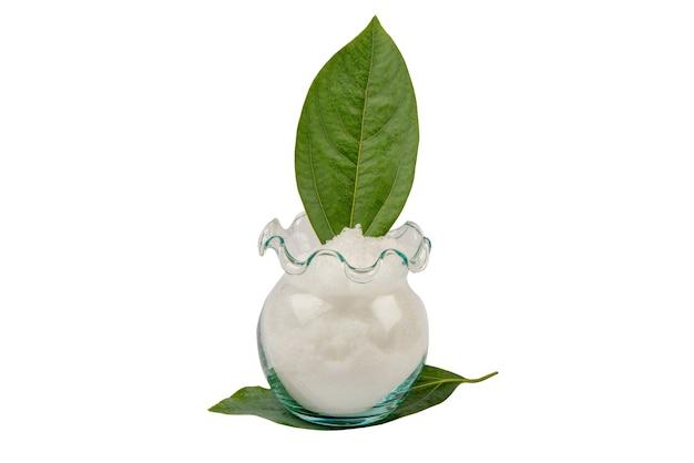Oddział kamfora zielone liście i kryształ na białym tle.