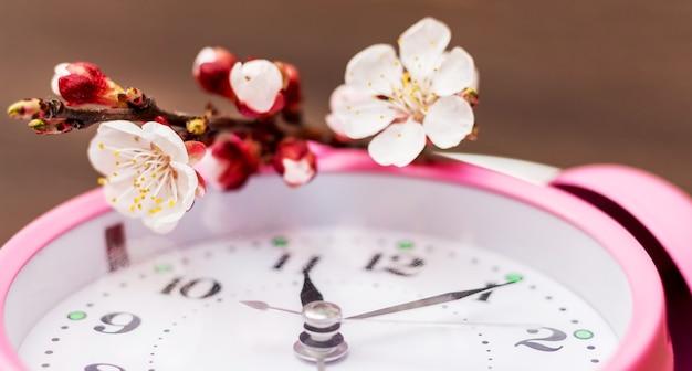 Oddział z kwiatami moreli na zegarze. przybycie wiosny_