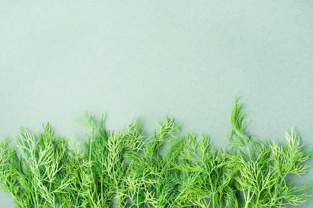 Oddziały świeżego koperku na zielonym tle z rzędu. zioła witaminowe w zdrowej diecie. widok z góry. skopiuj miejsce