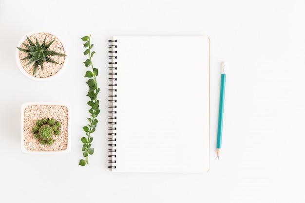 Odgórnego widoku biały notatnik z kaktusem na bielu