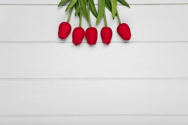 Odgórnego widoku czerwoni tulipany z przestrzenią