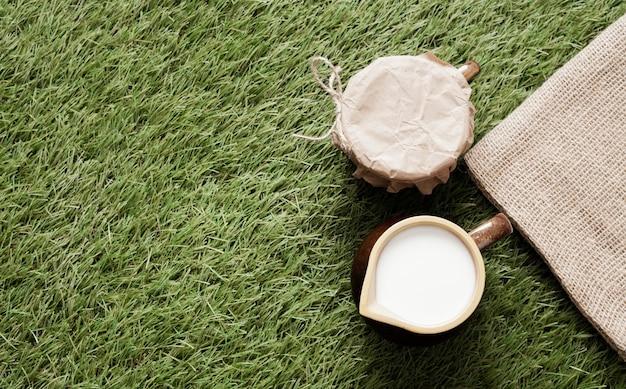Odgórnego widoku filiżanka mleko na trawie z kopii przestrzenią