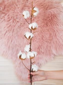 Odgórnego widoku kobiety mienia gałąź z bawełnianymi kwiatami