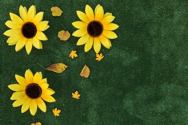 Odgórnego widoku rama z słonecznikami na zielonym tle