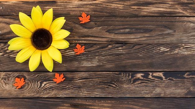 Odgórnego widoku rama z słonecznikiem na drewnianym tle