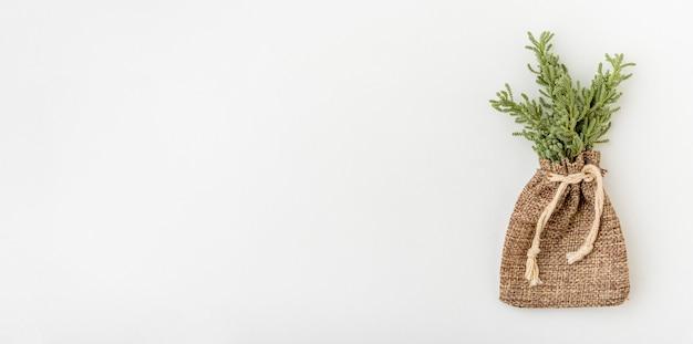 Odgórnego widoku środowiskowa roślina z kopii przestrzenią