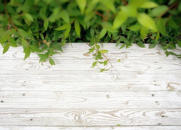 Odgórny widok biała drewniana podłoga w ogrodowym tle
